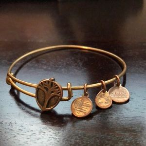"""Alex and Ani bangle """"slide"""" Unexpected Miracles"""